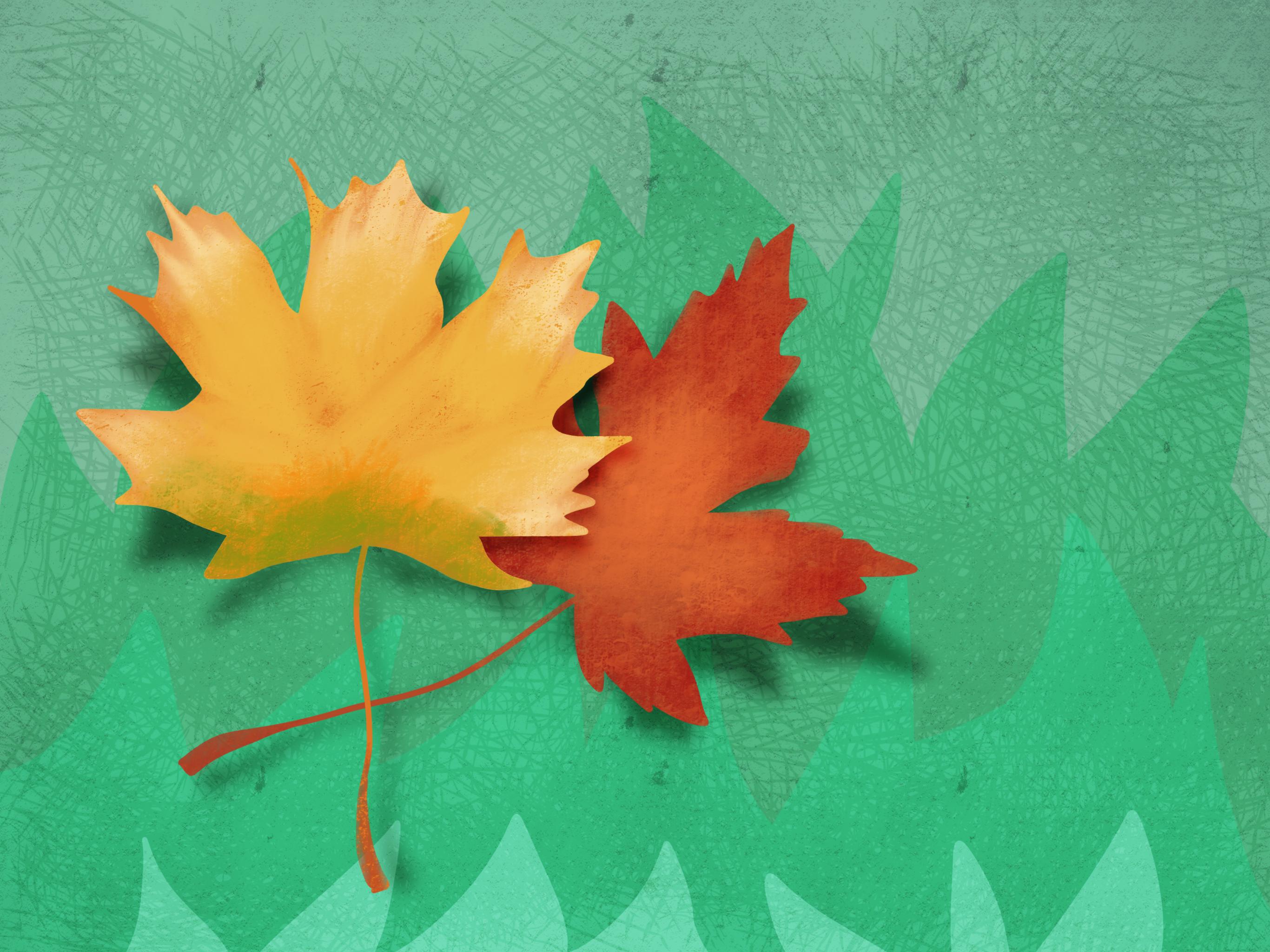 Seja o outono.png